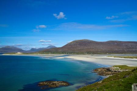 Wonderful beeches on Harris