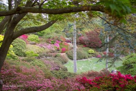 Windsor Valley Gardens