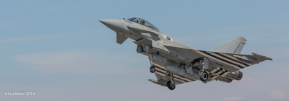 Eurofighter EF-2000 Typhoon FGR4 (1)