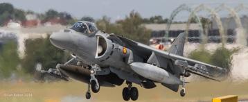 Harrier (32)