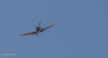 Supermarine Spitfire LF Mk. IX (12)